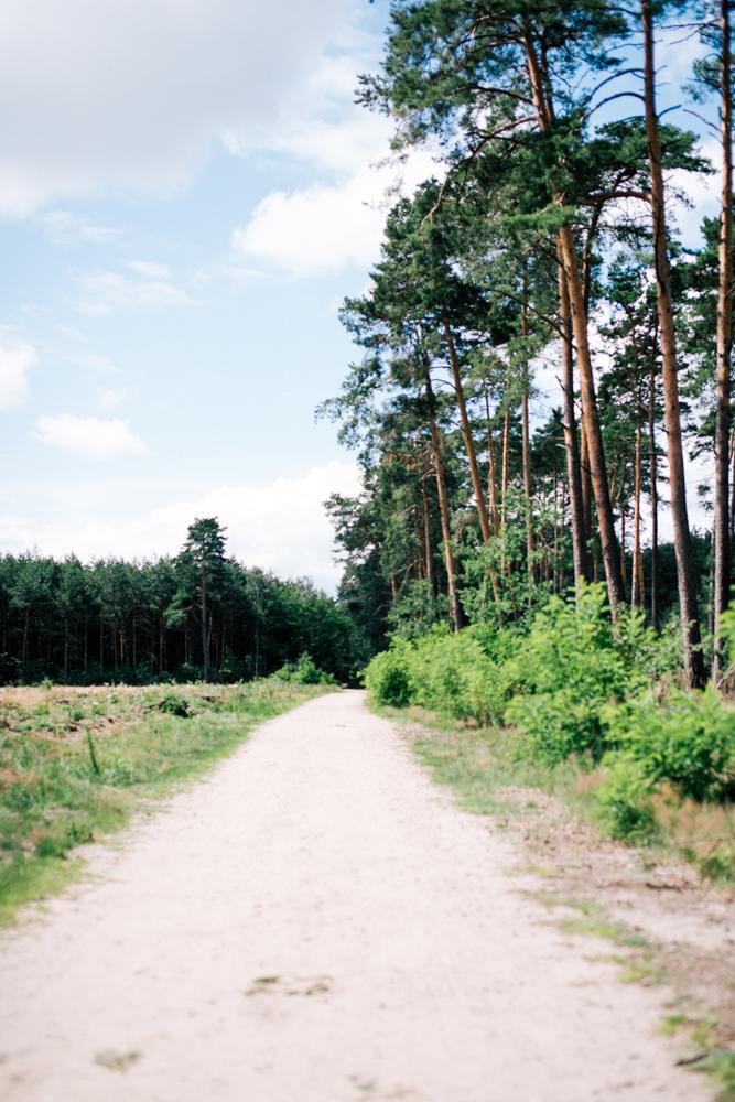 obraz-059