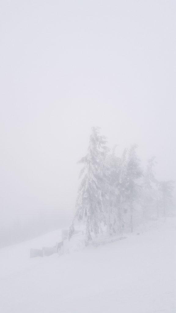 zima_25122016-005